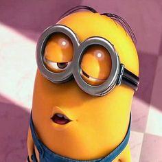 """""""#minions #minion #minionstagram"""""""