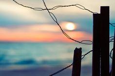 Happy Fence Friday {Morning Has Broken} Edition! | Flickr - Photo ...