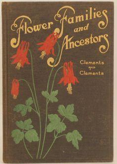 Flower Families and Ancestors | Antique Botanicals