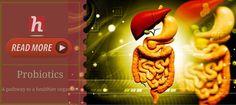 Probiotics – A pathway to a healthier organism-compressed