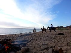 Horseback riding on the beach of Block Island.