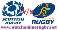 Scotland vs Australia rugby live