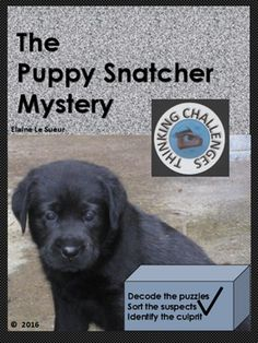 The Puppy Snatcher Thinking Challenge : A Secret Code Mystery Multiplication Practice, Higher Order Thinking, Critical Thinking Skills, Math Centers, Teacher Resources, Literacy, Have Fun, Mystery, Students