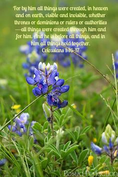 Colossians 1:16-17 - It's awesome that ALL THINGS are held together by Him. I see in this verse the omnipotence of God.