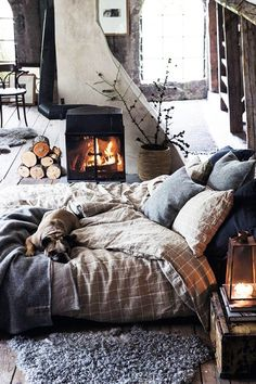 Pets Count - This Is How To Hygge Your Home - Photos