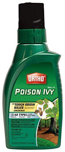 Ortho Brush-B-Gon Poison Ivy Oak & Brush Killer - Quart 0... https://www.amazon.com/dp/B000A0OG5K/ref=cm_sw_r_pi_dp_ZRqKxb0Z91NBF