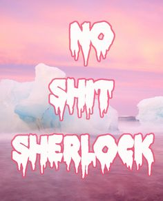 No Shit Sherlock. Word F, Sherlock Quotes, Tumblr Stuff, Sassy Quotes, Adult Humor, Pastel Goth, Cool Words, Sarcasm, Favorite Quotes