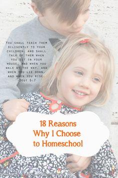 18 Reasons Why I Choose to Homeschool