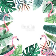 Вектор: Watercolor frame with tropical jungle leaves and pink flamingo.Vector aloha illustration