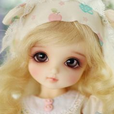 So incredibly precious! I definitely want this doll. Definitely. [CB] BASIC ROKO|DOLKSTATION - Ball Jointed Dolls Shop - Shop of BJD Dolls