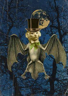 cat bat with a hat-digital collage-jlillard