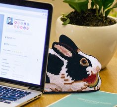 The ultimate cute bunny canvas!