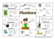 Learn Swedish, Swedish Language, Sign Language, Kindergarten, Education, Anton, Learning, School, Sustainability