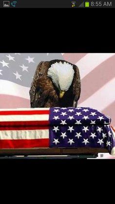 Honoring The Fallen I Love America, God Bless America, America America, American Pride, American Flag, American Quotes, American History, American Freedom, American Spirit