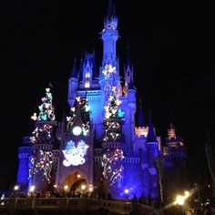 The happiest place in the world - Tokyo Disneyland