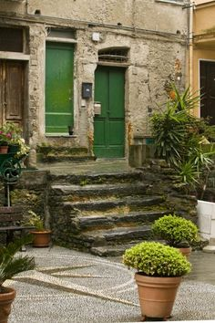 #Stone steps #green doors #potted green plants.