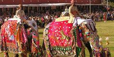 El Elefante y su importancia en la India