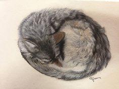 Sleeping wolf in soft pastels. Charmaine Diedericks