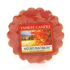 yankee-candle-natures-paintbrush-tart