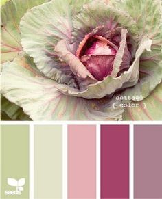 Colour inspiration for flowers to link with theme