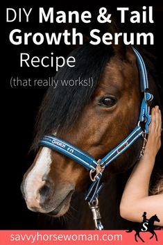DIY Mane & Tail Growth Recipe for Horses {Printable} - Savvy Horsewoman Horse Gear, My Horse, Dressage, Horse Braiding, Horse Mane Braids, Horse Information, Horse Tail, Horse Care Tips, Horse Treats