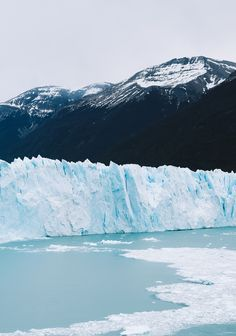 Patagonie, le voyage inoubliable – Part 2 • Le chien à taches