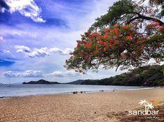 Sandbar is located in beautiful Playa Hermosa, Guanacaste, Costa Rica.  #CostaRica #PuraVida #Beaches #Playa #Vacation #Travel #Tropics #Tropical #Paradise #Guanacaste