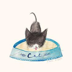 cat illustration | ilustración de Laura Hughes