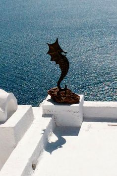 Seahorse in Santorini Greece - Is Santorini worth it? Is this Greek island packed with blue buildings, stunning beaches and glorious sunsets that justify the price. The answer in pictures.