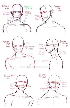 Drawing Tips drawing busts by AngelKite - Body Reference Drawing, Art Reference Poses, Figure Drawing, Anatomy Reference, Learn Drawing, Hand Reference, Anatomy Sketches, Anatomy Art, Art Sketches