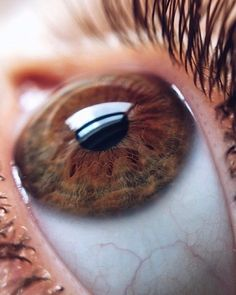Macro Tip: @paulevanbecker says that sitting down or leaning on something to stabilize your body while using a macro lens can make a macro photo come out perfectly. Do you have any #macro tips? Let us know in the comments. #olloclip #eye by olloclip
