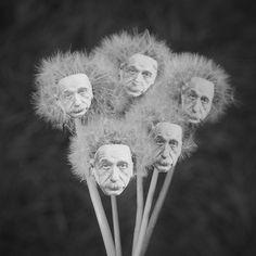 Einstein craft