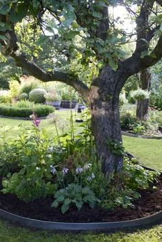 Affordable And Effective Cottage Garden Designing Methods For Your Home Your home is your world, and much like the world around us, looks are important. You may take your time to care for your house, but what about your yard? Back Gardens, Outdoor Gardens, Garden Yard Ideas, Garden Path, Herb Garden, Garden Borders, Diy Patio, Garden Cottage, Shade Garden