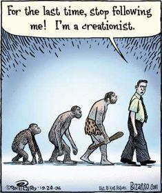 evolution - such a pushy bitch