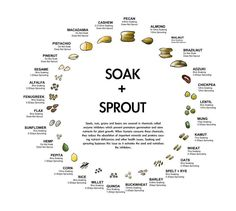 "This is a FANTASTIC Soaking and Sprouting Chart. For healthy digestion, all nuts, grains, and seeds should be soaked to remove the enzyme inhibitors and activate the full nutritional potential of the food. ""Be a Soaker not a bloater"" I always say!"