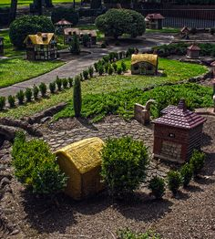 I would like to know what those tiny bushes are. Fairy Garden Houses, Garden Trees, Barbie Castle, Mystical World, Garden Railroad, Fairy Village, Castle House, Model Trains, Outdoor Gardens