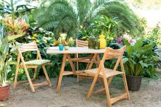 Let's meet under the palm trees Club Tropicana, Summer Paradise, Outdoor Furniture Sets, Outdoor Decor, Palm Trees, Meet, Home Decor, Palm Plants, Decoration Home