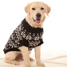 Knitting Pattern For Medium Dog Sweater : 1000+ images about wooly woofers on Pinterest Dog jumpers, Dog sweaters and...