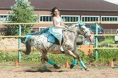 Instagram media by ksk_gloria - Наши конники на соревнованиях по костюмированной манежной езде 26 июня 2016 года Оля и Принцип #horseriding #horse #horseride #horserider #кскглория