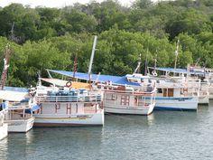 Laguna de La Restinga, Isla de Margarita, Venezuela.