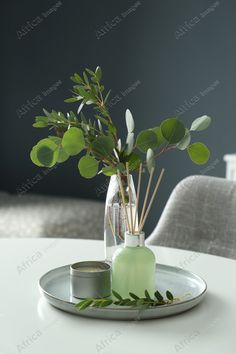 Eucalyptus branches, candle and aromatic reed air freshener on white table indoors. Interior elements. Buy Creativity & Imagination. Take a look at what the world's best photographers have to offer at africa-images.com Eucalyptus Branches, Best Photographers, Air Freshener, Imagination, Creativity, Africa, Indoor, Candles, Stock Photos
