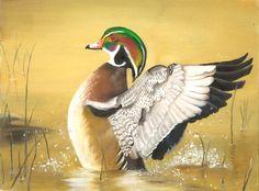 Megan Zou, Florida Junior Duck Stamp Best of Show