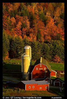 Farm and silos surrounded by hills in autumn foliage. Vermont,