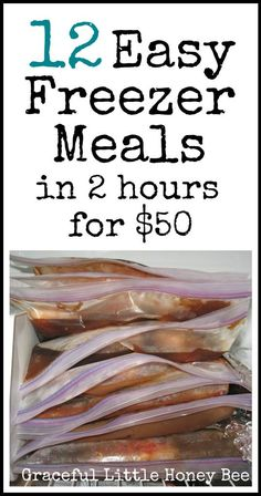 Learn how to make 12 easy frugal freezer meals in 2 hrs for 50 Recipes are included Yay for freezer cooking Make Ahead Freezer Meals, Crock Pot Freezer, Frugal Meals, Easy Meals, Freezer Recipes, Cheap Recipes, Healthy Meals, Budget Freezer Meals, Inexpensive Meals