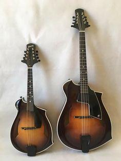 Mandolin, Violin, Bliss, Music Instruments, Instruments, Guitars, Musical Instruments