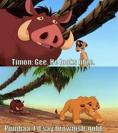 "But apparently, Timon and Pumbaa of Lion King had the debate first: | ""The Lion King"" Eerily Predicted The Great Dress Debate"