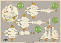 Il favoloso mondo di carta di Totò: Il pollaio restaurato (III)
