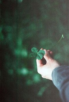 ◍iт'ѕ noт тнe world тнaт'ѕ crυel, iт'ѕ тнe people in iт◍ aesthetic ~green~