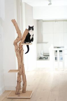 We love our furry little felines almost as much as our own family, but no one wants their couch and carpets clawed to shreds. Luckily, a few design-minded cat ladies (and gents) have reconceived the lowly cat scratcher into beautifully conceived home item Diy Cat Tree, Gatos Cats, Cat Scratching Post, Cat Scratcher, Cat Room, Pet Furniture, Diy Stuffed Animals, Crazy Cats, Cool Cats