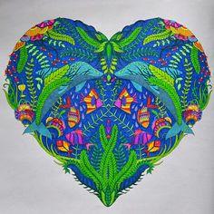 Millie marotta 'Tropical wonderland'